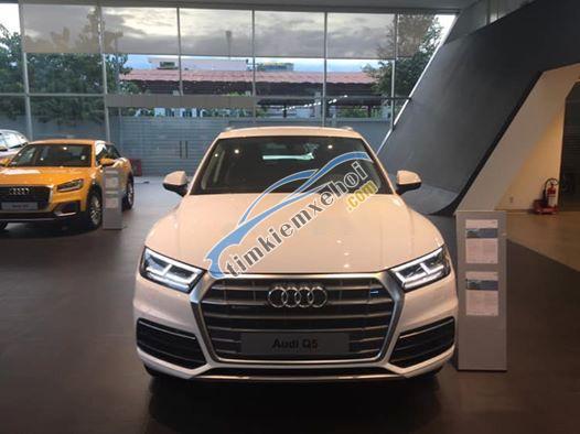 Bán Audi Q5 sản xuất năm 2019, màu trắng