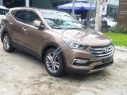Cần bán xe Hyundai Santa Fe 2.2 đời 2017 giá cạnh tranh giá 970 triệu tại Cần Thơ
