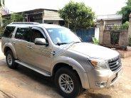 Cần bán Ford Everest năm sản xuất 2009, màu ghi vàng giá 460 triệu tại Đồng Nai