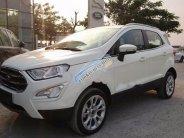 Bán Ford EcoSport năm sản xuất 2018, màu trắng, giá tốt giá 689 triệu tại Tp.HCM