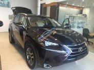 Lexus NX200T nhập khẩu Mỹ giao ngay, giá tốt giá 2 tỷ 510 tr tại Hà Nội