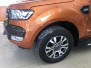 Bán xe Ford Ranger Wildtrak 3.2L 4x4 AT sản xuất 2017, xe nhập giá 925 triệu tại Tp.HCM