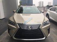 Bán xe Lexus RX 350 sản xuất 2018, màu vàng, xe nhập giá 3 tỷ 810 tr tại Hà Nội