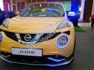 Bán xe Nissan Juke đời 2015, màu vàng, nhập khẩu giá 1 tỷ 60 tr tại Bình Dương