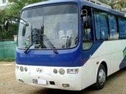Cần bán lại xe Hyundai Aerotown đời 2004, xe nhập giá 695 triệu tại Hà Nội