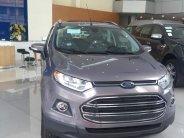 Ford Ecosport mới 100% giá cực rẻ, tặng phụ kiện, hỗ trợ trả góp 80%, LH 0794.21.9999 giá 590 triệu tại Hà Nội