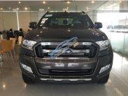 Giá bán xe Ford Ranger Wiltrak 3.2 AT 4x4 xám (ghi), bán xe có hỗ trợ trả góp Bank tại Quảng Ninh giá 925 triệu tại Quảng Ninh