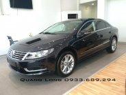 Cần bán xe Volkswagen Passat CC - Full option - Nhập khẩu nguyên chiếc giá 1 tỷ 100 tr tại Lâm Đồng