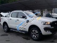 Chỉ với 199tr giao ngay Ford Ranger Wildtrak Navi đời 2018 nhập Thái, Euro 4 - LH: 0919.263.586 giá 629 triệu tại Hà Nội