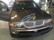 Bán ô tô BMW X5 đời 2004, màu ghi vàng   giá 540 triệu tại Đắk Lắk