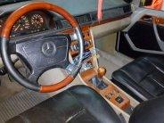 Bán Mercedes E230 đời 1989, màu xám (ghi), nhập khẩu chính hãng giá 85 triệu tại Tp.HCM