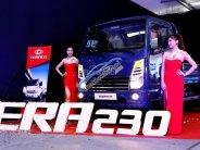 Xe tải Daehan Tera 230 (tải trọng 2T3) máy Hyundai - Đại lý cấp I giá tốt nhất giá 338 triệu tại Hà Nội