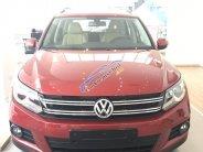 Bán Volkswagen Tiguan đời 2017, màu đỏ, xe nhập khẩu nguyên chiếc giao ngay - LH 0965.156.561 giá 1 tỷ 290 tr tại Hà Nội