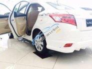 Bán xe Toyota Vios E sản xuất năm 2017 giá 503 triệu tại Cần Thơ