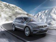 (Đạt DAVID) Bán Volkswagen Tiguan Allspace 2018, (màu sắc đa dạng), nhập khẩu mới 100% LH: 0933.365.188 giá 1 tỷ 699 tr tại Tp.HCM