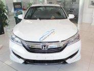 Bán Honda Accord 2.4 AT đời 2018, màu trắng, nhập khẩu giá 1 tỷ 198 tr tại Thanh Hóa