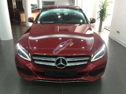 Bán xe Mercedes-Benz C200 2018 đủ màu, giao ngay, dịch vụ tốt nhất TP. HCM - Mercedes Haxaco Võ Văn Kiệt giá 1 tỷ 489 tr tại Tp.HCM