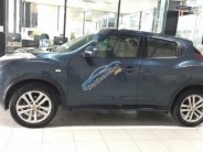 Bán xe Nissan Juke 1.6 AT đời 2012, màu xanh lam, xe nhập, giá 660tr giá 660 triệu tại Hà Nội