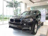 Cần bán BMW X5 năm sản xuất 2017, màu đen, xe nhập giá 3 tỷ 199 tr tại Tp.HCM