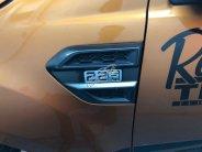 Bán Ford Ranger Wildtrak 2.2 năm sản xuất 2016, màu đỏ, nhập khẩu giá 535 triệu tại Tp.HCM
