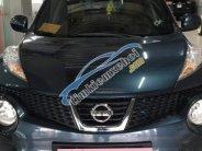 Bán ô tô Nissan Juke AT sản xuất năm 2012, màu xanh lam   giá 640 triệu tại Hà Nội
