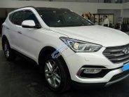 Bán Hyundai Santafe giá chỉ từ 919 triệu, hỗ trợ trả góp giá 919 triệu tại Tp.HCM
