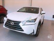 Giao ngay xe mới nhập khẩu Mỹ Lexus NX200T giá 2 tỷ 510 tr tại Hà Nội