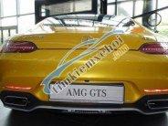 Cần bán Mercedes AMG GTS 2018, màu vàng, nhập khẩu giá 10 tỷ 869 tr tại Tp.HCM