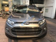 Cần bán gấp Ford EcoSport năm sản xuất 2017 chính chủ giá Giá thỏa thuận tại Hà Nội