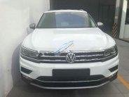 Bán xe Volkswagen Tiguan Allspace đời 2018, màu trắng, nhập khẩu, giá tốt giá 1 tỷ 699 tr tại Hà Nội
