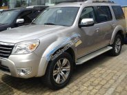 Bán xe Ford Everest sản xuất năm 2007, màu hồng phấn giá 350 triệu tại Tp.HCM