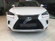 Bán Lexus NX 300 đời 2018, màu trắng, nhập khẩu nguyên chiếc chính hãng giá 2 tỷ 439 tr tại Tp.HCM