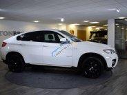 Cần bán BMW X6 sản xuất năm 2008, đăng ký lần đầu 2010, màu trắng giá 800 triệu tại Tp.HCM