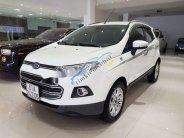 Cần bán xe Ford EcoSport Titanium đời 2015, màu trắng, giá chỉ 510 triệu giá 510 triệu tại Tp.HCM