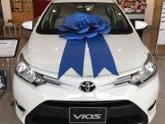 Bán xe Vios số sàn màu trắng, xe giao ngay, giá tốt nhất giá 510 triệu tại Tp.HCM