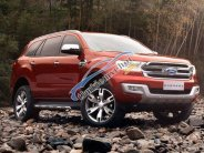 Ford Everest 2018 thiết kế mới, mẫu mới, nhập khẩu nguyên chiếc TP. HCM giá 999 triệu tại Tp.HCM