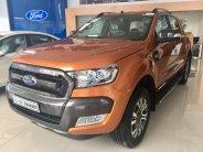Ford Hải Phòng-Wildtrak 3.2l AT 4x4 sản xuất 2018, màu đỏ, nhập khẩu nguyên chiếc giá 920 triệu tại Hải Phòng
