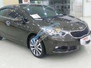 Cần bán gấp Kia K3 sản xuất 2014, màu nâu, giá tốt giá 499 triệu tại Gia Lai