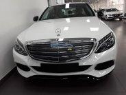Xe Mới Mercedes-Benz C 250 Exclusive 2017 giá 1 tỷ 690 tr tại Cả nước