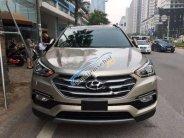 Hyundai 3S Đà Nẵng cần bán Santa Fe 7 chỗ, mới 100%, sản xuất 2018 giá 1 tỷ 20 tr tại Đà Nẵng