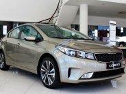Kia Cerato mẫu xe dẫn đầu phân khúc C sở hữu ngay chỉ với 162 triệu - LH: 0971.002.379 giá 499 triệu tại Gia Lai