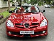 Cần bán xe Mercedes-Benz SLK class sản xuất 2008 màu đỏ, giá tốt giá 860 triệu tại Tp.HCM