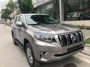 Cần bán xe Toyota Prado VX đời 2018, màu nâu, nhập khẩu nguyên chiếc giá 2 tỷ 340 tr tại Hà Nội
