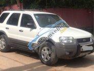 Cần bán gấp Ford Escape 3.0 AT 2002, màu trắng  giá 158 triệu tại Hà Nội