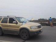 Xe Ford Escape XLT 3.0 AT năm 2004, màu vàng   giá 202 triệu tại Hà Nội