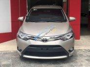 Cần bán xe Toyota Vios G đời 2015, màu vàng xe gia đình, giá 497tr giá 497 triệu tại Đà Nẵng