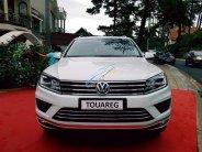 Bán Volkswagen Touareg đời 2018, màu trắng, nhập khẩu nguyên chiếc giá 2 tỷ 499 tr tại Cần Thơ
