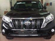 Bán ô tô Toyota Prado TXL đời 2016, màu đen, nhập khẩu chính chủ giá 2 tỷ 195 tr tại Hà Nội