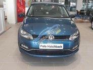 Bán Volkswagen Polo sedan đời 2017, màu xanh lam, xe nhập nguyên chiếc giá 695 triệu tại Ninh Bình