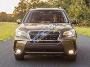 Hotline Subaru 0929009089, bán xe Subaru Forester 2.0 Eyesight 2018 đủ màu, giá cạnh tranh   giá 1 tỷ 666 tr tại Tp.HCM